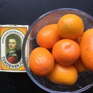 Smitte og lyst til at spise Kumquats