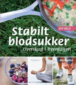 Stabilt blodsukker - overskud ihverdagen. Bogen som giver dig redskaber til at få mere klarhed og energi