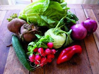 Skal vi spise grønsager?